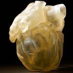 Imprimir órganos humanos con Stratasys y Digital Anatomy Solution